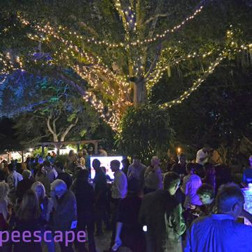 Grape Escape at Earthscapes Greater Palm Harbor YMCA